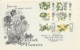 1967 British Wild Flowers, Stuart FDC, with Verwood cds