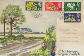 1964 Botanical Congress, Hand Painted First Day Cover, Bridport Dorset cds.  Ordinary Set
