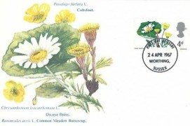 1967 Wild Flowers. Set of 6 Stamp Publicity (Worthing) Ltd Maxicards, Worthing Sussex FDI