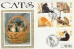 1995 Cats Westminster Official Silk FDC, Catshill Worcestershire H/S