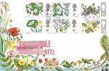 1967 British Wild Flowers, Connoisseur FDC, Beachlands Pevensey Sussex cds