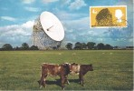 1966 British Technology, J Arthur Dixon Postcard (with Cows) FDC, 4d Phosphor Jodrell Bank stamp only, Great Portland BO W1 cds
