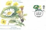 1967 Wild Flowers. Set of 6 Stamp Publicity (Worthing) Ltd Maxicards, Worthing Sussex FDI