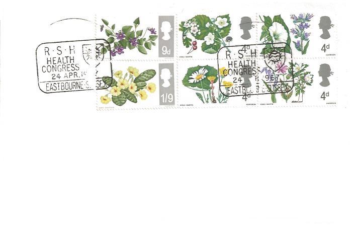 1967 Wild Flowers, Plain FDC, R.S.H Health Congress Eastbourne Sussex H/S